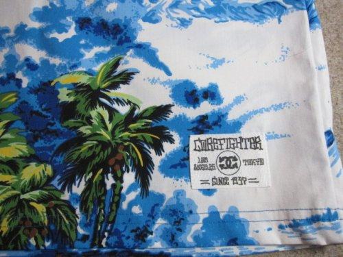 他の写真3: COREFIGHTER/KAMEHAME SHORTS  BLUE